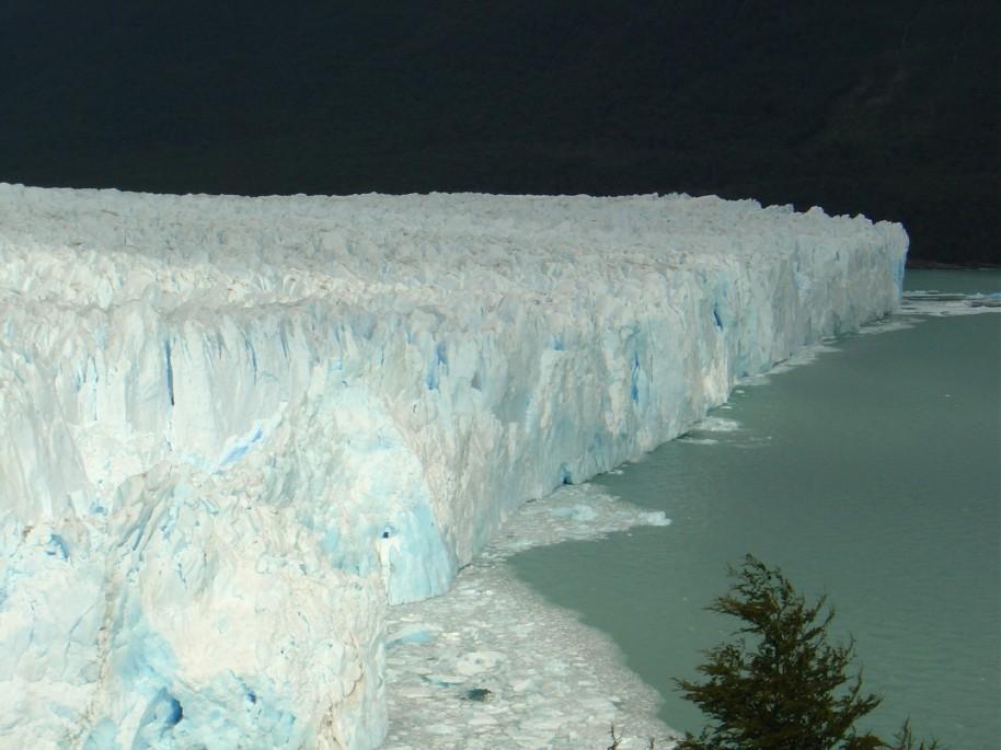 Patagonia 205 (Large)