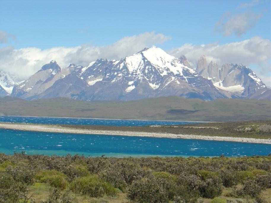 Patagonia 251 (Large)