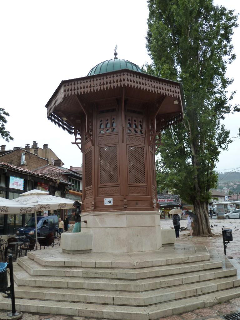 Bosnia(Trini)_0779 (Medium)