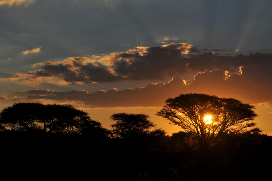 Sudafrica 0065